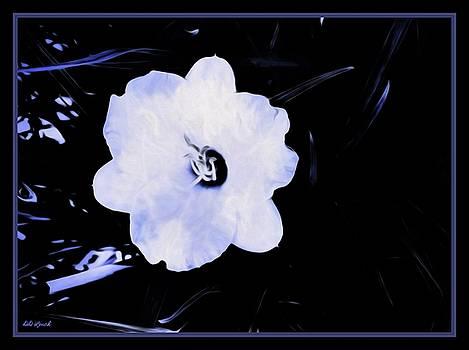 Softly In White by Debra Lynch