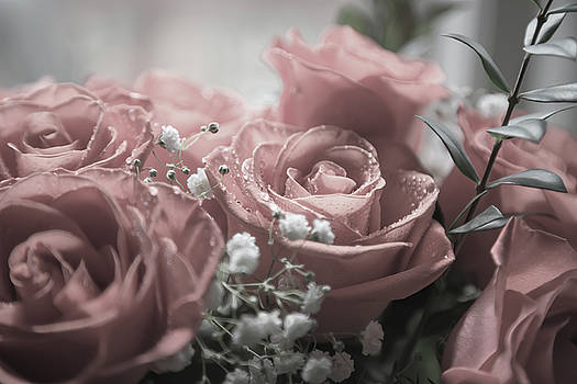 Softness of Love by Betsy Knapp