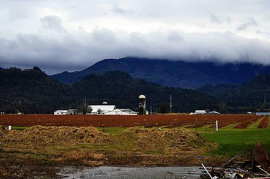 Clayton Bruster - Soggy Farmstead