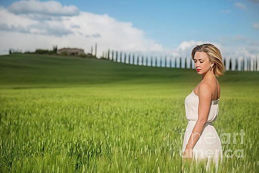 Sogno Toscana by Evelina Kremsdorf