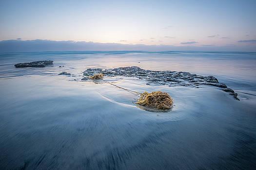 Solana Beach - Holding On by Alexander Kunz