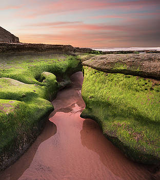 Solana Beach Red Morning by William Dunigan
