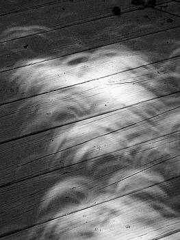 Solar eclipse casting shadows by Paul Wilford