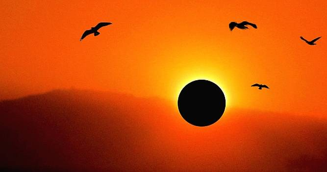 Solar Eclipse by Romuald  Henry Wasielewski