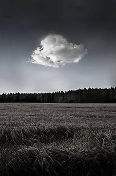 Solitary by Gerd Doerfler