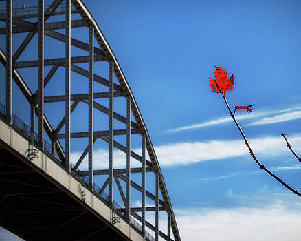 Solitary Red Maple Leaf at the St. Georges Bridge by Bill Swartwout