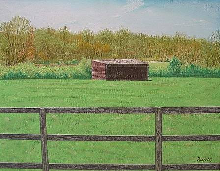 Solitary Shed by Harvey Rogosin