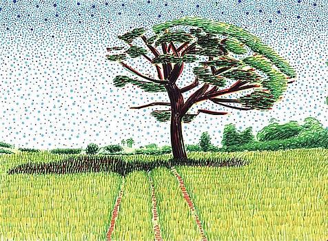 Solitary Tree  by Daniel Ribeiro