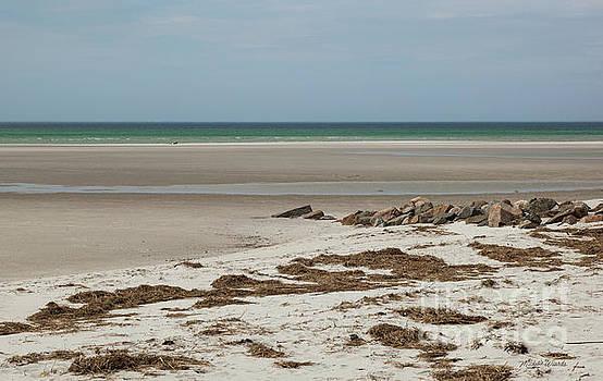 Solitude by The Seashore by Michelle Wiarda