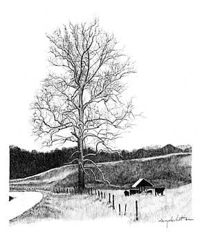 Solitude by Gary Gackstatter