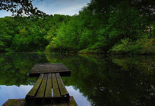 Solitudes  by John Forde