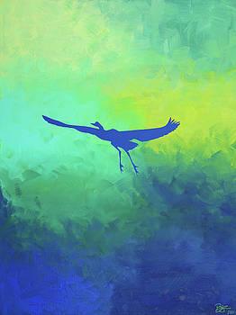 Solo Flight by Lance Bifoss