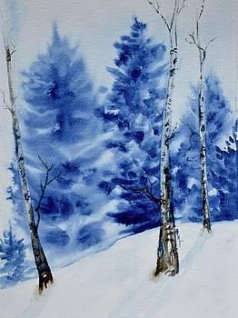 Solstice Snow by Beverley Harper Tinsley