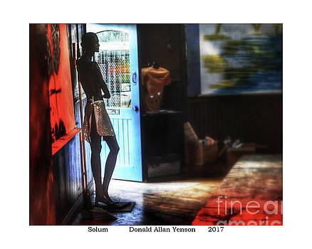 Solum by Donald Yenson