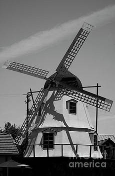 Solvang Windmill by Ivete Basso Photography