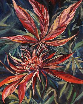 Somango by Mary Jane