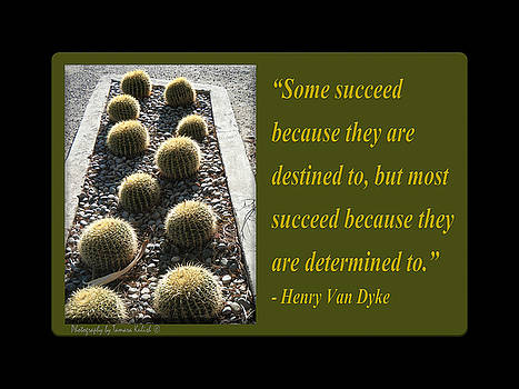 Tamara Kulish - Some succeed because they are destined to