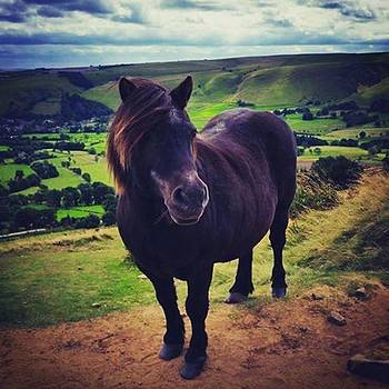 Someone We Met On Top Of Mam Tor. He by Rebecca Bromwich