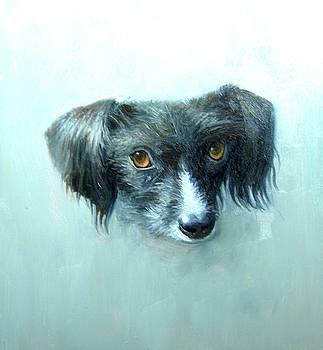 Someones Pet by Mel Greifinger