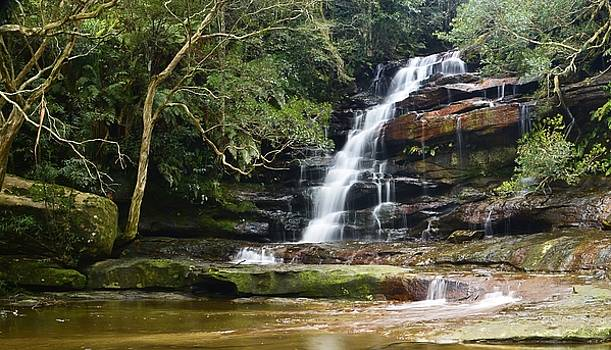 Somersby Falls by Terry Everson
