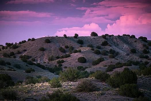 Sometimes Skies Really Are Pink by Mary Lee Dereske