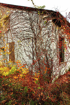 Somewhere in Rhode Island - Abandoned Mill 002 by Lon Casler Bixby