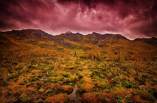 Somewhere out There by Richard Espenant