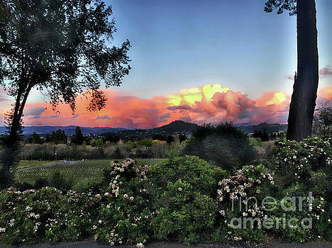 Sonoma County Sunsets by Leslie Hunziker