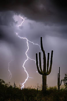 Sonoran Desert Monsoon Storming by James BO Insogna