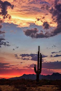 Sonoran Summer Sunset  by Saija Lehtonen
