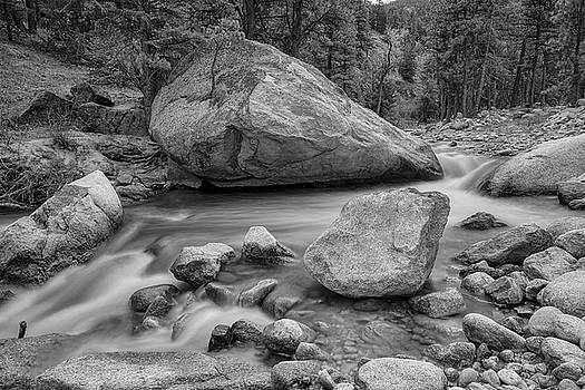 Soothing Colorado Monochrome Wilderness by James BO Insogna
