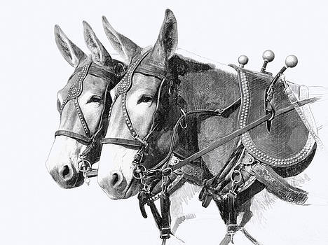 Sorrel Mule Team by Bethany Caskey