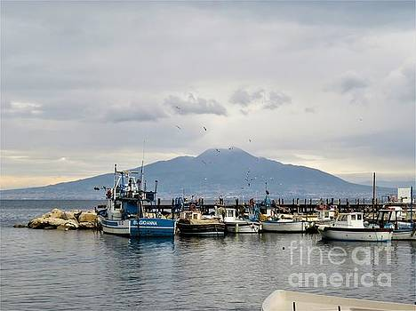 Sorrento Harbor by Laurie Morgan