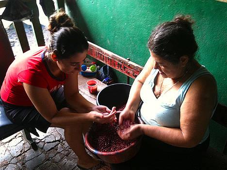 Rosa Diaz - Sorting Beans