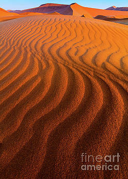 Inge Johnsson - Sossusvlei Curves
