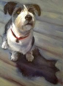 Soul Dog aka Otis Grilli by Cynthia Mozingo