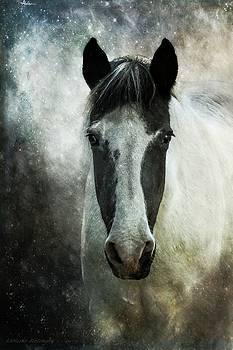 Soul Horse, Mystical Spiritual Horse Art by Melissa Bittinger