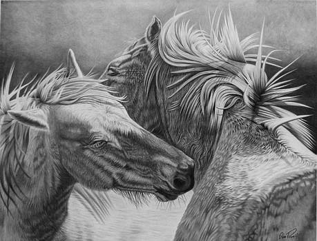 Soul Mates by Glen Powell