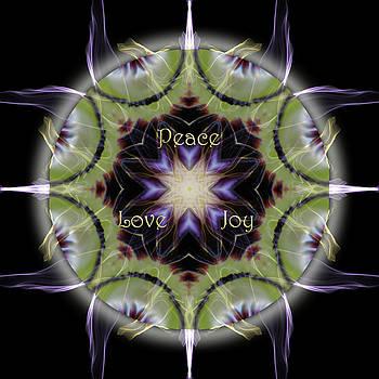 Soul Star Holiday Mandala by Alicia Kent