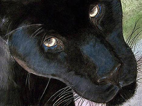 Soulful Eyes by Jodi Schneider
