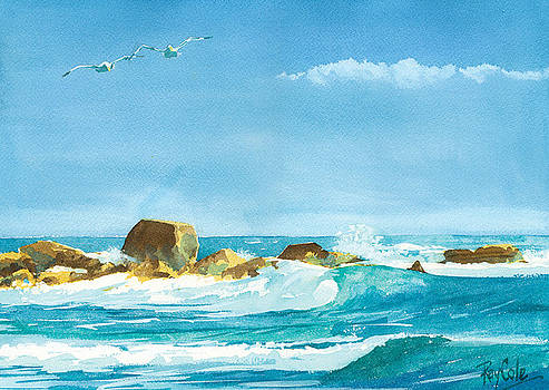 Sound of Surf by Ray Cole