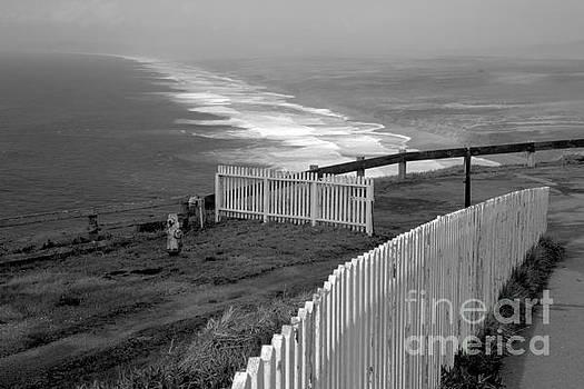 Adam Jewell - South Beach Fence