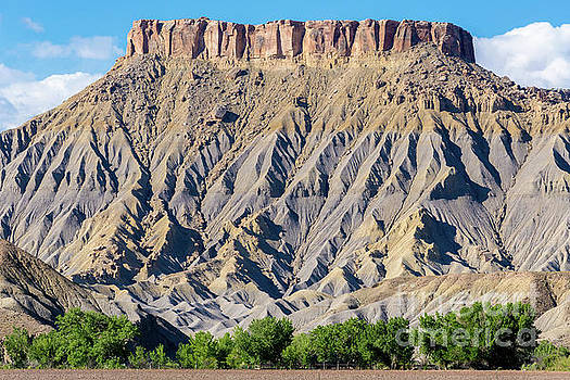 South Caineville Mesa - Utah by Gary Whitton