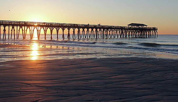 South Carolina Sunrise by Carol Oberg Riley