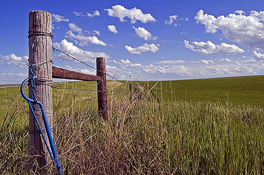 South Dakota Fence by Kristen Vota