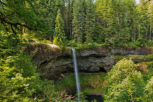 South Falls 0417 by Tom Kelly