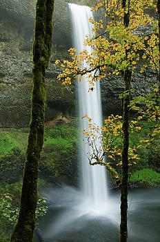 South Falls Autumn by Don Schwartz