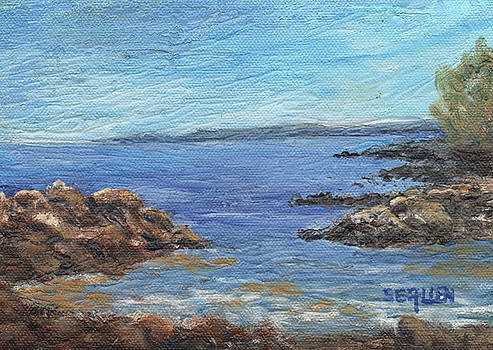 South from Rye Harbor by Sharon E Allen