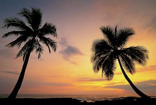South Kona Sunset by Greg Vaughn