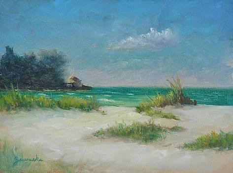 South Lido Morning by alan Zawacki  by Alan Zawacki